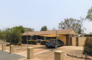 Picture of 123 Cassilis St, Coonabarabran NSW 2357
