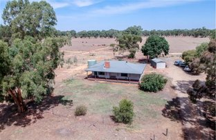 Picture of 504 Reynoldsons Road, Strathmerton VIC 3641
