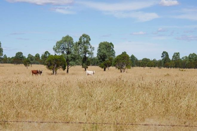 Picture of 581 ACRES GRAZING LIFESTYLE, CECIL PLAINS QLD 4407