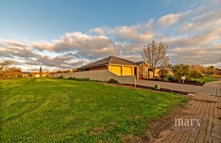 Picture of 37 Auricht Avenue, Tanunda SA 5352