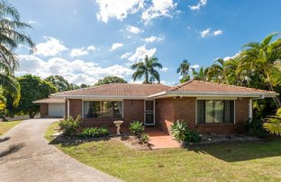 Picture of 43 Helicia Street, Algester QLD 4115