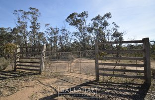 Picture of 246 Puzzle Flat Road, Bealiba VIC 3475