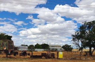 Picture of 48-50 Winton Road, Hughenden QLD 4821