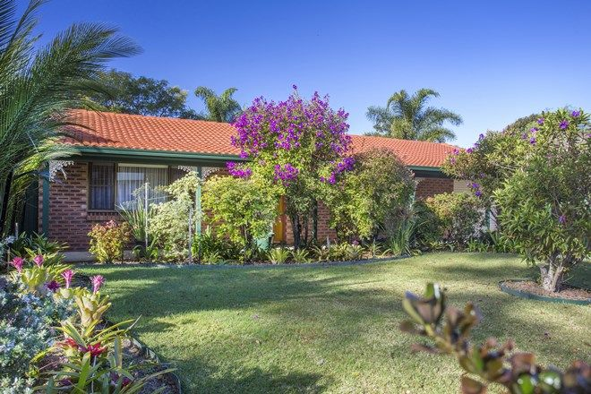 Picture of 30 Bangalow Street, NARRAWALLEE NSW 2539