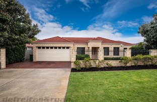 Picture of 3 Thorpe street, Morley WA 6062