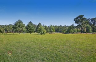 Picture of 3156 Healesville-Kinglake Road, Kinglake VIC 3763