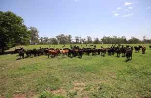 Picture of 590 Riverleigh Station Road, Mundubbera QLD 4626