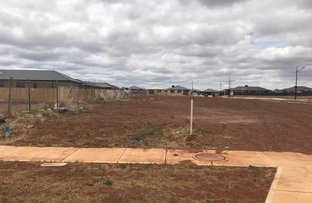 Picture of Lot 1001 Marriott Boulevard (Toolern Waters Estate), Melton South VIC 3338