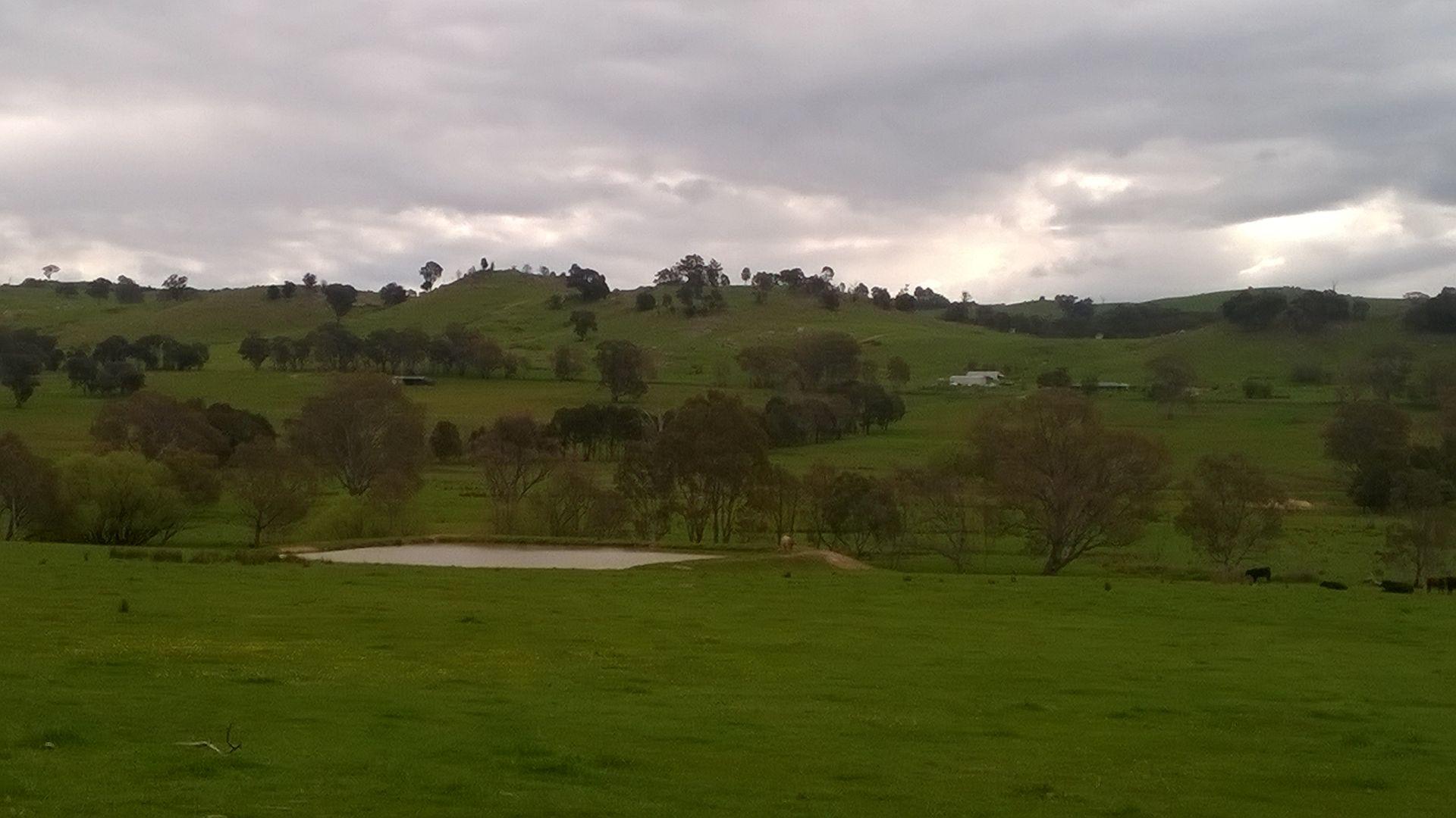 134 Killeens Hill Road, Gooram via Euroa, Euroa VIC 3666, Image 2