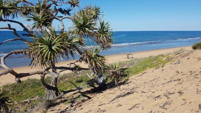 Lot 10 Lindy Drive, Rules Beach QLD 4674, Image 1