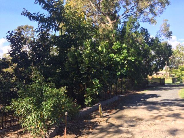378 Torquay Terrace, Torquay QLD 4655, Image 1