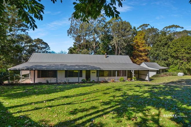 Picture of 931 Maleny-Montville Road, BALMORAL RIDGE QLD 4552