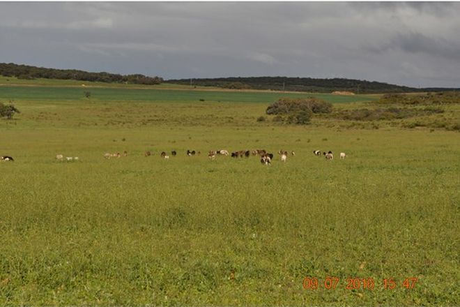 Picture of 1015 Water Supply Road, DONGARA WA 6525