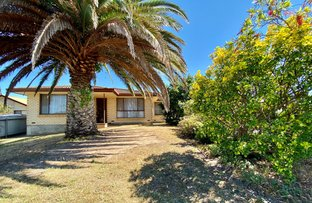 Picture of 24 Wandana Avenue, Port Lincoln SA 5606