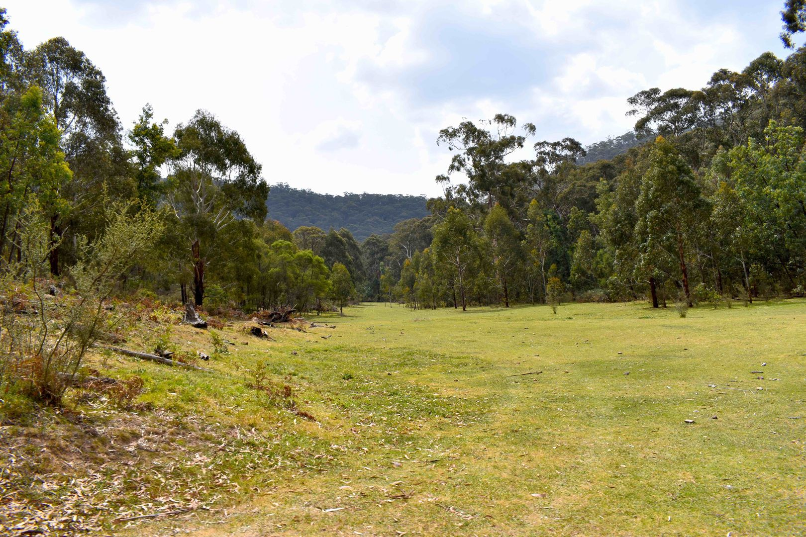 257 Browns Gap Road, Hartley NSW 2790, Image 1