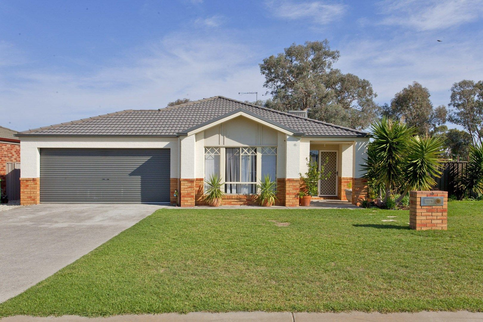 53 McBean Street, Culcairn NSW 2660, Image 0