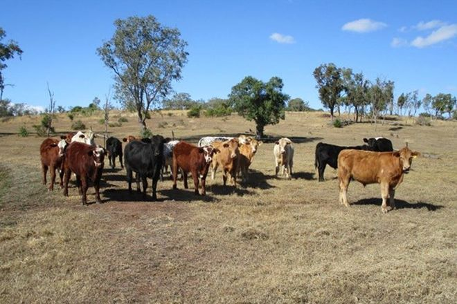 Picture of COORANGA NORTH 366 ACRES WITH IRRIGATION, COORANGA QLD 4408