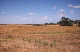 223 Acres Ellerslie-Panmure Road, Framlingham VIC 3265