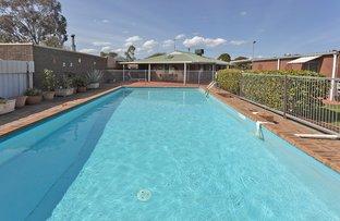 Picture of 92 Wood Street, Jindera NSW 2642