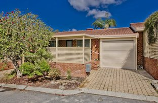 Picture of 7/41 Avenell Road, Bayswater WA 6053
