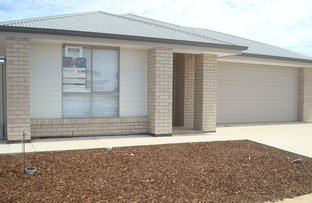 Picture of 13 Drupe Street, Munno Para West SA 5115
