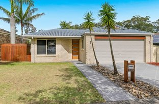 Picture of 113 Pimelea Crescent, Mount Cotton QLD 4165