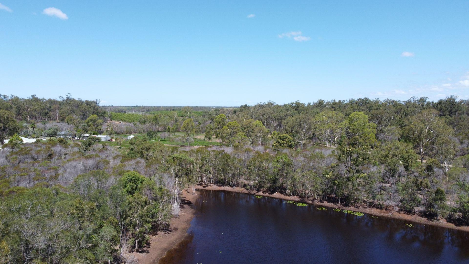34 Rosella Drive, South Kolan QLD 4670, Image 0