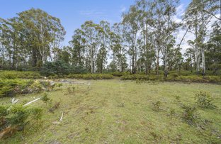 Picture of 180 Pearces Road, Strickland TAS 7140