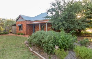 Picture of 1843 Millwood Rd, Coolamon NSW 2701