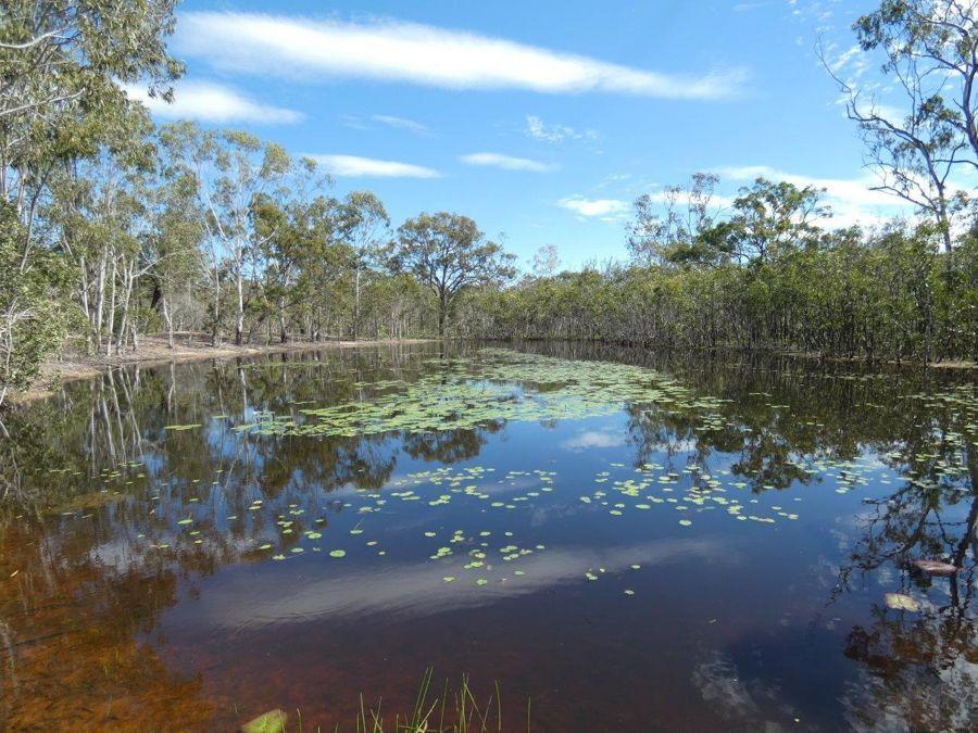 83 Deepwater Road, Deepwater QLD 4674, Image 1