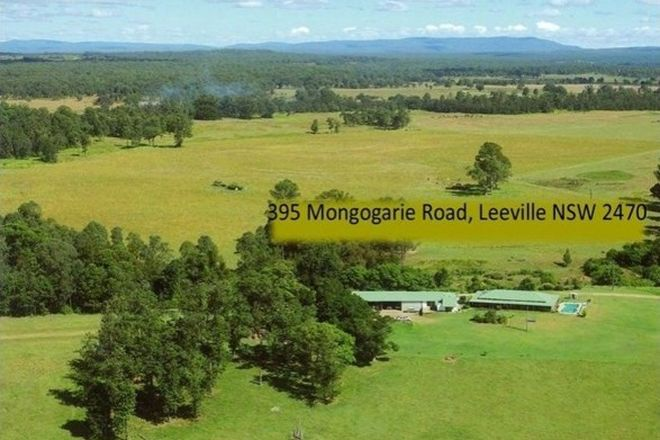 Picture of 395 Mongogarie Road, LEEVILLE NSW 2470