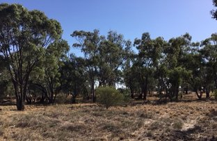 Picture of Lot 1 Wollongough Street, Ungarie NSW 2669