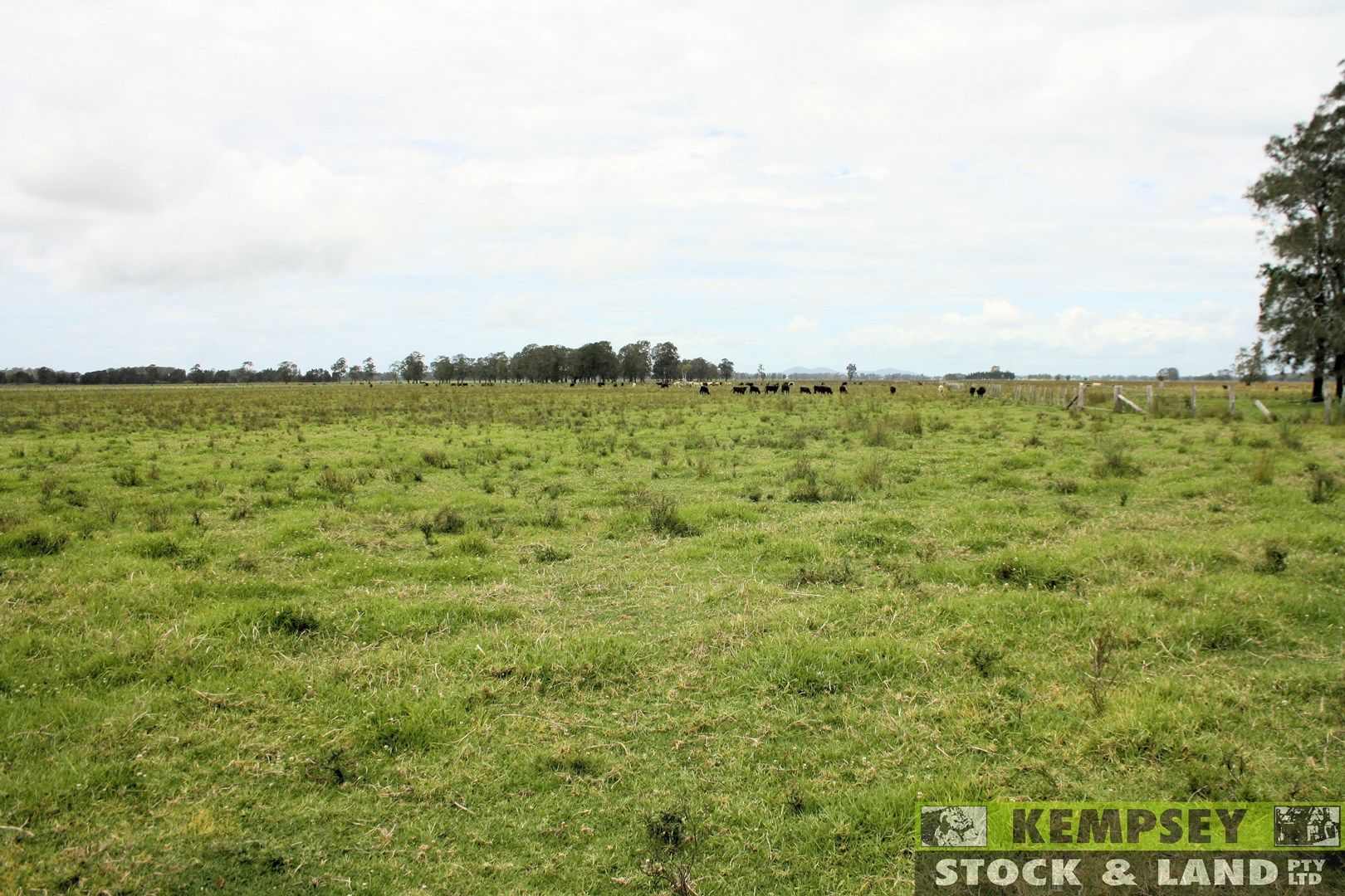 Lots 195 & 257 Croads Lane, Clybucca NSW 2440, Image 0