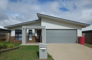 Picture of 12 Highview Close, Roma QLD 4455