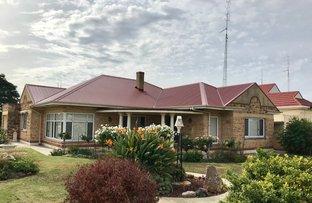 Picture of 61 Graves Street, Kadina SA 5554