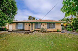 Picture of 11 Chertley Street, Morley WA 6062
