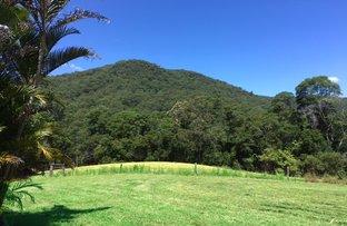 Picture of 999 Mulvena Road, Larnook NSW 2480