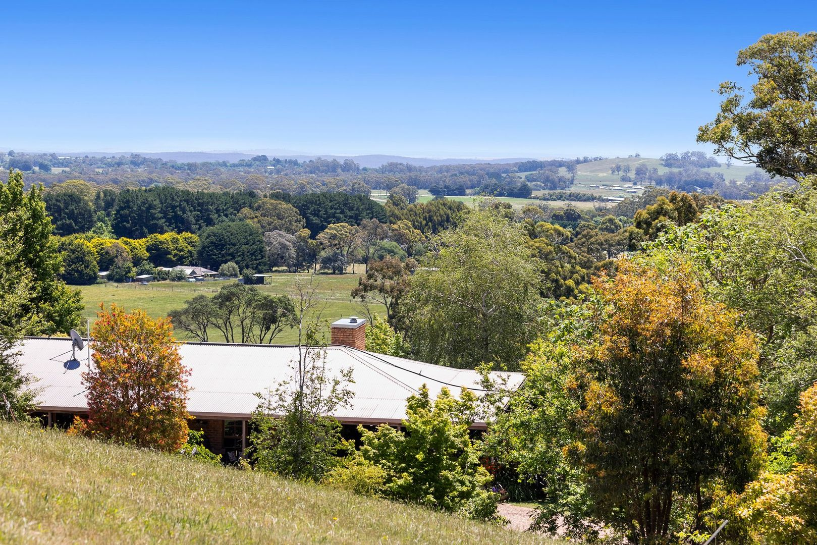 150 Currys Hill Road, Musk VIC 3461, Image 0