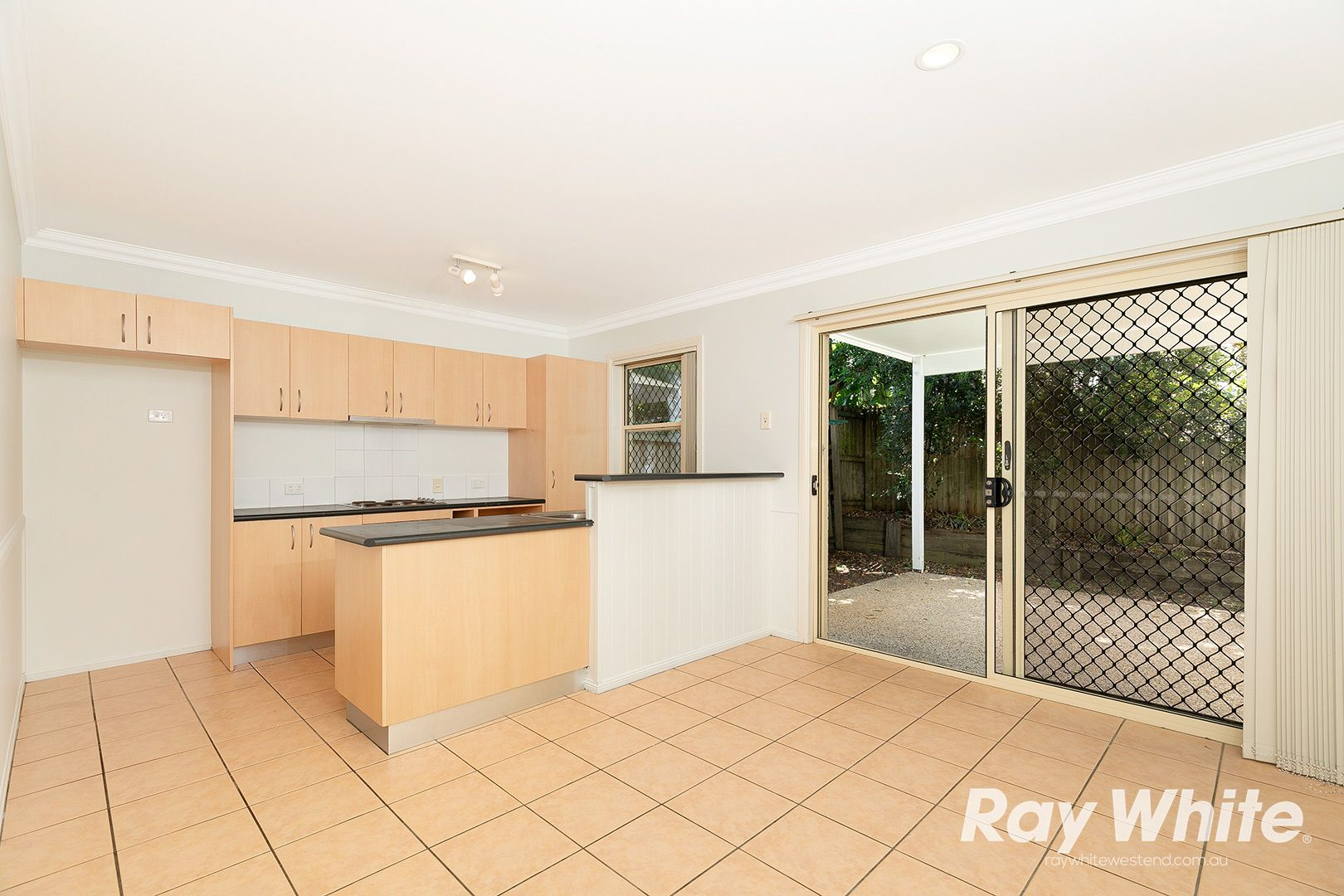8/23 Norman Street, Annerley QLD 4103, Image 1