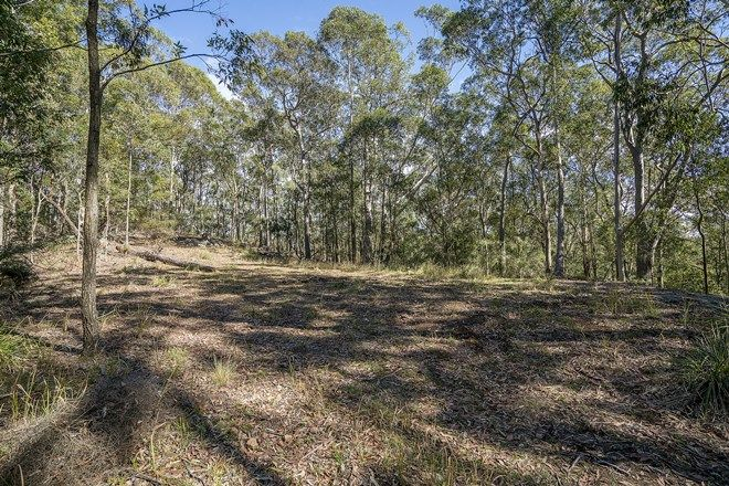 Picture of 439 Sauls Road, MANDALONG NSW 2264