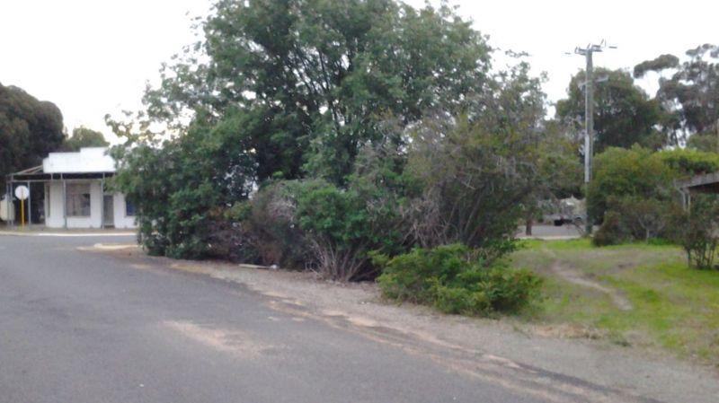 13 Upland Street, Wagin WA 6315, Image 2
