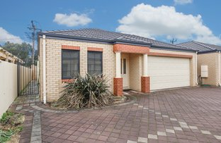 6/33 Wattle Mews, Hocking WA 6065