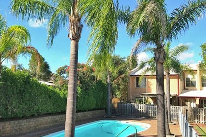 Picture of 1/2-10 Henry Drive, SINGLETON NSW 2330