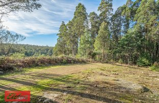 Picture of 398 Old Bernies Road, Margate TAS 7054