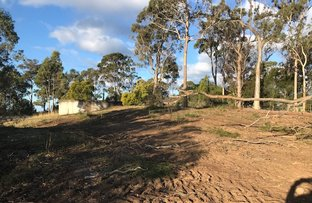Picture of Lot 19 EMERALD CRESCENT, Wallagoot NSW 2550