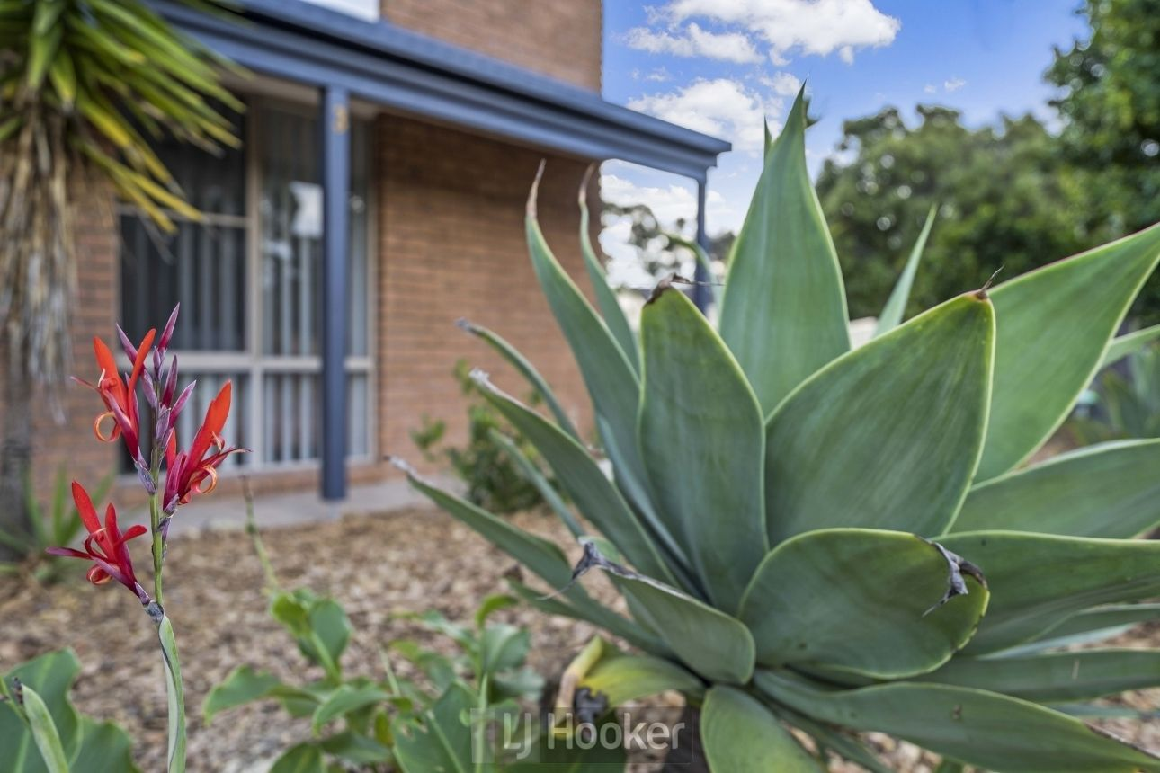 3 Aurora Court, Warners Bay NSW 2282, Image 2