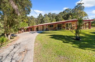 Picture of 1505 Bucca Road, Bucca NSW 2450