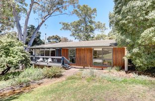 Picture of 8 Redgum Drive, Belair SA 5052