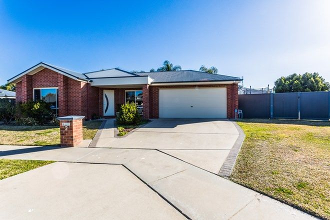 Picture of 3 Willicent Terrace, ECHUCA VIC 3564