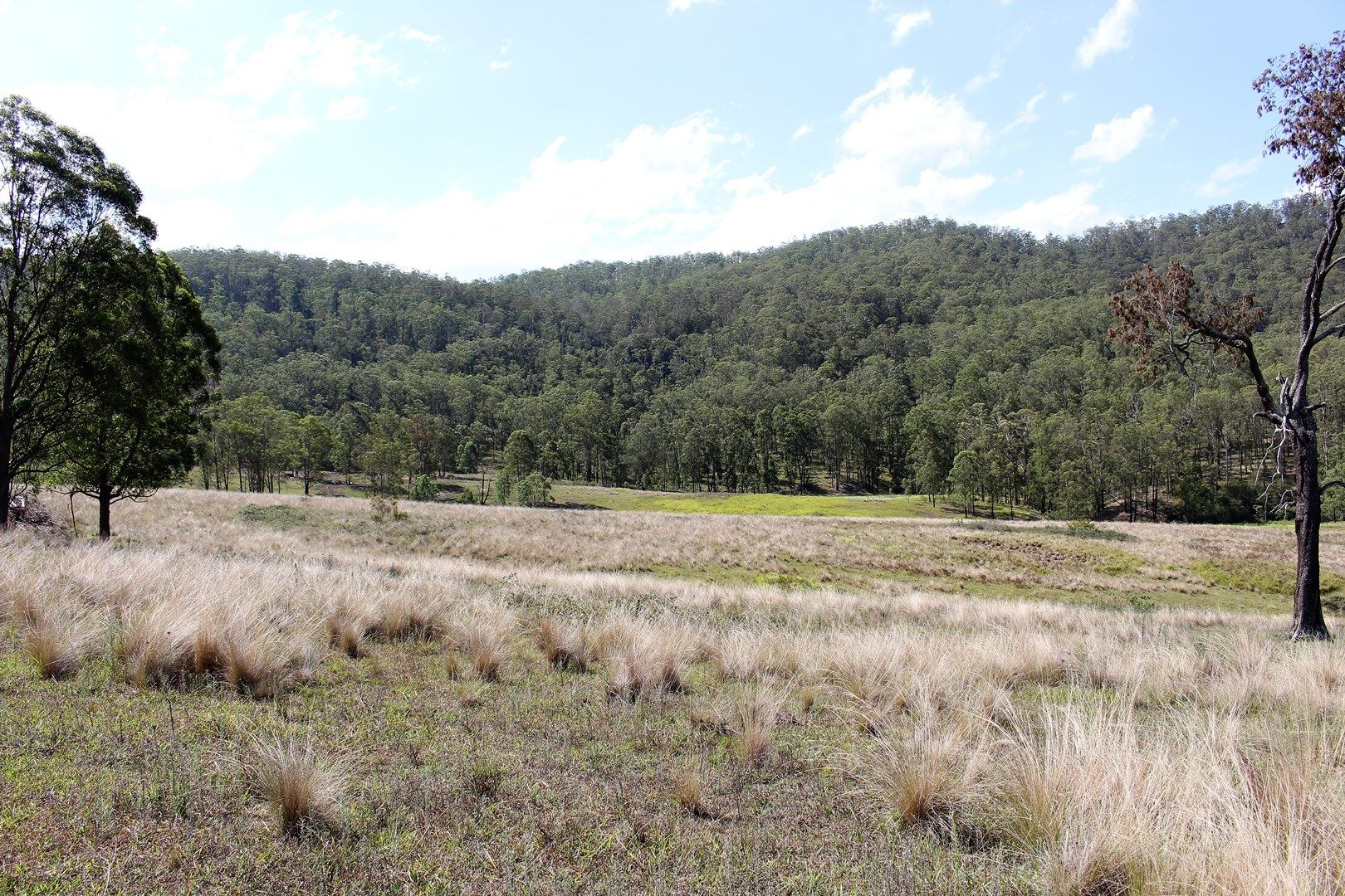Proposed Lot A Mud Hut Road, Gloucester NSW 2422, Image 0